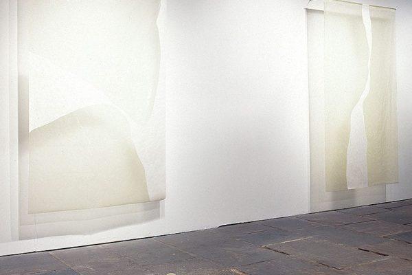 sem título, untitled 2002 óleo e óleo damar sobre papel oil and damar varnish on paper 200x156cm